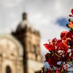 Oaxaca City -Oaxaca, Mexico 13