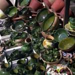ceramics at Atzompa Oaxaca Mexico 2