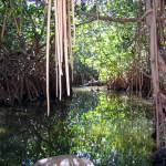 Chacahua Lagoon Puerto Escondido Oaxaca Mexico 5