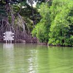 Chacahua Lagoon Puerto Escondido Oaxaca Mexico 2