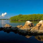 Chacahua Lagoon Puerto Escondido Oaxaca Mexico 7