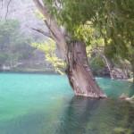Tecomaxtlahuaca Lagoon Oaxaca Mexico 3