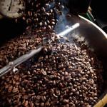 Nuevo Mundo Coffee Roaster Oaxaca 1