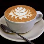 Nuevo Mundo Coffee Roaster Oaxaca 5