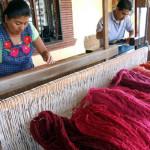 El Tono de la Cochinilla - Oaxaca, Mexico 7