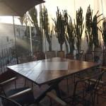 Los Pacos Restaurant Oaxaca 5