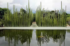 Ethnobotanical garden - Oaxaca