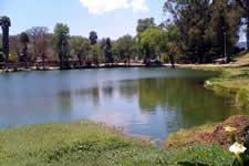 Guelatao lagoon - Sierra Norte, Oaxaca