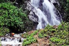 La Guacamaya waterfall - Oaxaca