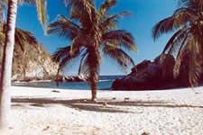 La Mina beach - Puerto Angel, Oaxaca