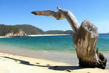 San Agustin Bay is a large bay about 30 minutes drive from La Cruzacita -Huatulco, Oaxaca, Mexico