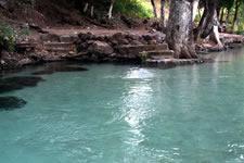 Ojo de agua de Tlacotepec - Isthmus, Oaxaca